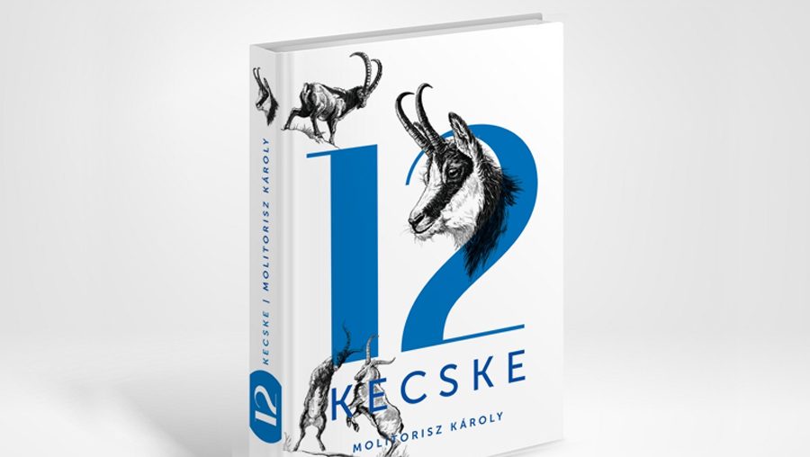 12 Goats – book design and illustration